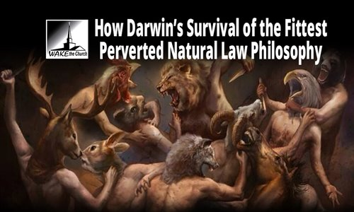 survival-fittest-natural-law.jpg