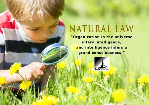 The Greatest Achievement of Mankind is the Philosophy of Natural Law