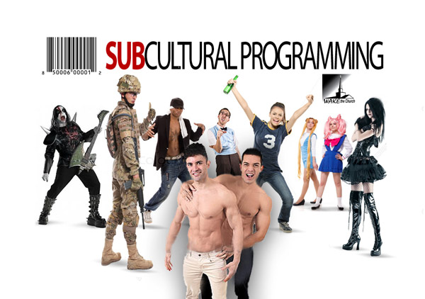 Homosexuality is a subculture
