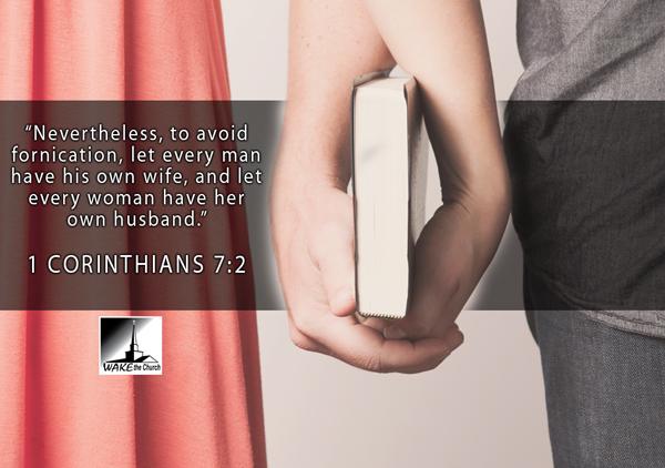 Biblical marriage purity